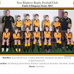 U6 Stingrays